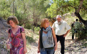 València i Rocafort demanen l'inici dels tràmits per a nomenar el Pinar de les Pedreres Paratge Natural Municipal