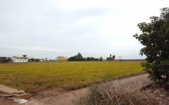El Consell aprueba el proyecto de Ley de l'Horta de València
