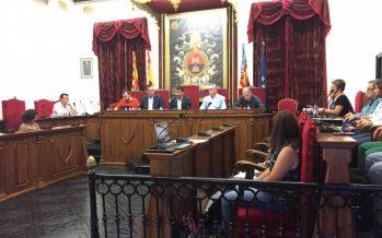 Cultura inicia los trámites para aprobar una nueva ley de protección del Palmeral de Elche