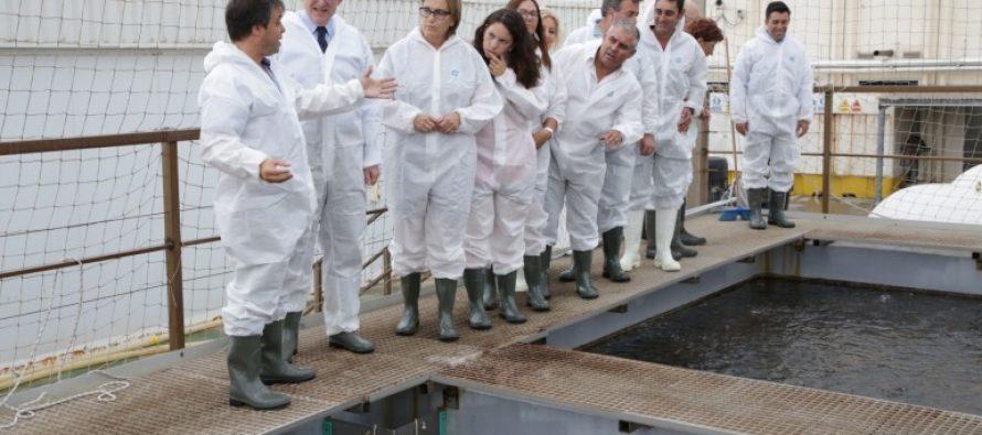 Puig destaca la fortaleza de un sector agroalimentario valenciano internacionalizado