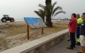 La Diputación de València promueve la recuperación del ecosistema dunar en el litoral