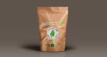 Nace Insectfit, la primera empresa que promueve el consumo de insectos en España