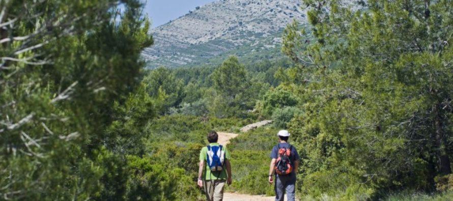 El Consell ajuda amb 400.000 euros a 79 entitats de voluntariat en prevenció d'incendis forestals