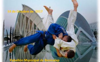 El Campeonato de España de Judo en edad escolar se celebrará en la Comunitat