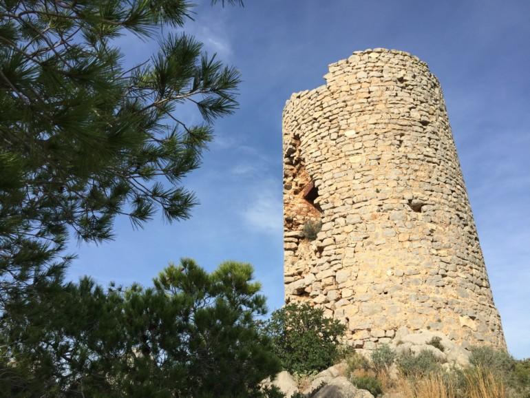 Medio Ambiente ha programado visitas guiadas a los parques naturales de la Comunitat Valenciana los fines de semana de los meses de septiembre y octubre.