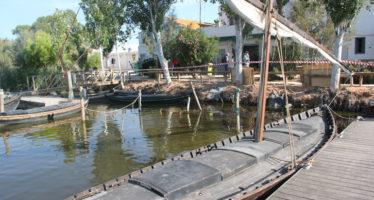L'Ajuntament de Canals ofereix un curs gratuït de manipulador d'aliments