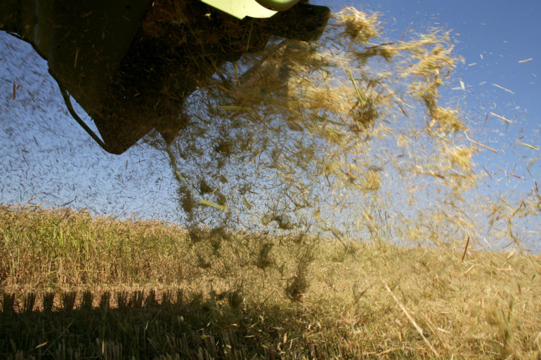 La quema de la paja del arroz