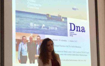El festival D*NA ja figura en una tesi doctoral