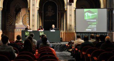La dieta del mar en la prehistoria valenciana a debate