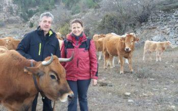 Concluye el primer curso de ganadería extensiva y escuela de pastores