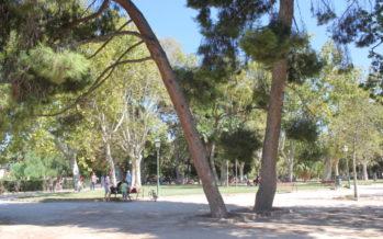 Primera jornada de debate de pymes agroforestales valencianas