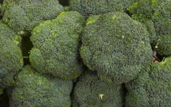 +Brócoli lanza un mensaje de unidad en su campaña de alimentación saludable