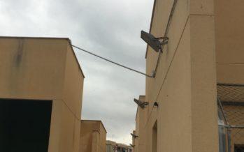L'Ajuntament substituïx amb videovigilància les càmeres falses del Centre d'Avifauna de Natzaret