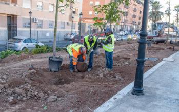 Comienza la plantación de árboles y plantas en el Parque Lineal de Benimámet