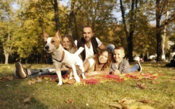 Viveros acogerá el FAMAS FEST, primer festival para familias y mascotas de Europa