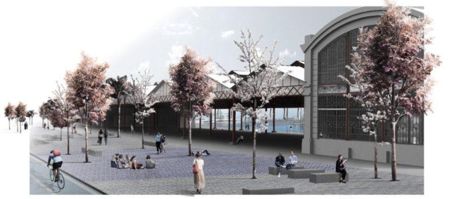 Les obres al Tinglado 2 preveu una gran plaça amb arbres, zones esportives i de jocs