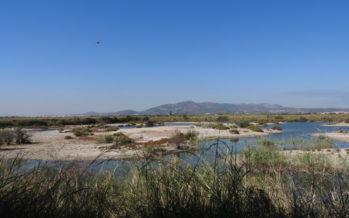 Llegan 100.000 metros cúbicos de agua del Xúquer a la Marjal dels Moros tras el incendio