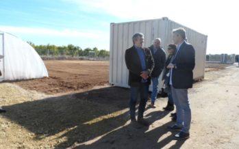 La Pobla de Vallbona habilita un Viver Municipal amb ajuda de la Diputació