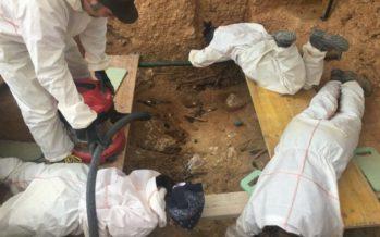 Troben al menys 15 cossos amb signes de violència en la fossa 22 del cementeri de Paterna