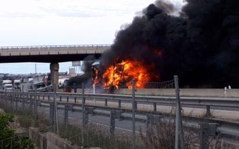 Se incendia un trailer al chocar dos camiones en la A-7 a la altura de Beneixida