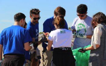 Cerca de 300 voluntarios recogen 250 kilos de basura en la playa de Patacona