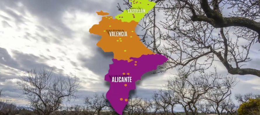 Turisme lleva la ruta 'Camins del dinosaures' al Museo Príncipe Felipe