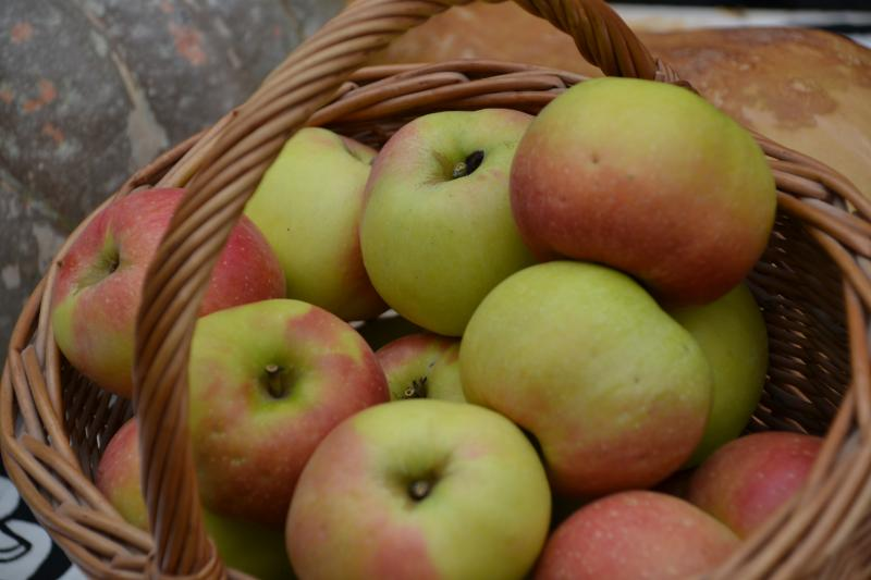 manzana esperiega