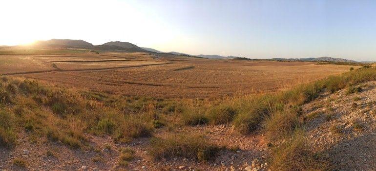 Panorámica de típico valle cerealista, ZEPA Moratillas-Almela
