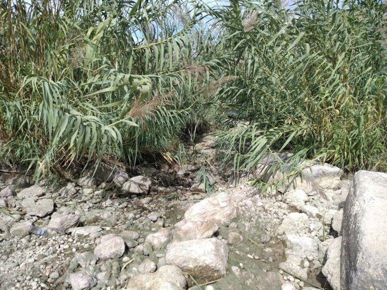 Lecho del río Serpis totalmente seco que evidencia el incumplimiento del caudal mínimo ecológico.