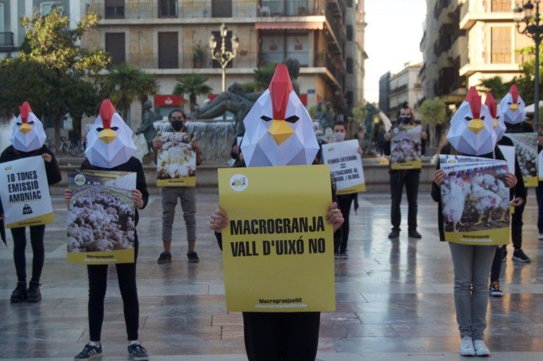 manifestacion contra macrogranja Vall d'Uixò