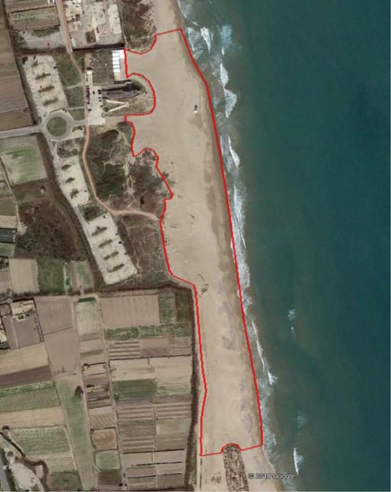 El Puerto de València restaurará el sistema dunar de la playa de La Creu de El Saler